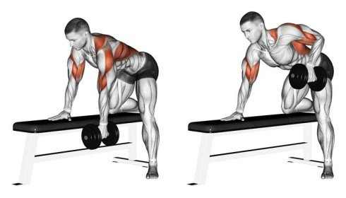 One-Arm Rows Home Back Workout