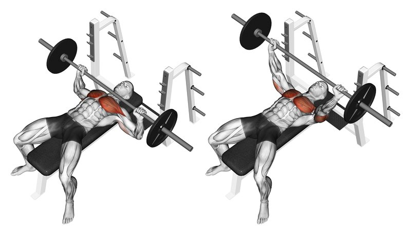 Lean Chest Workout