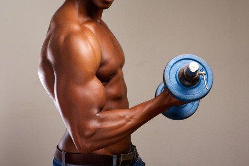 Top 5 Bicep Exercises