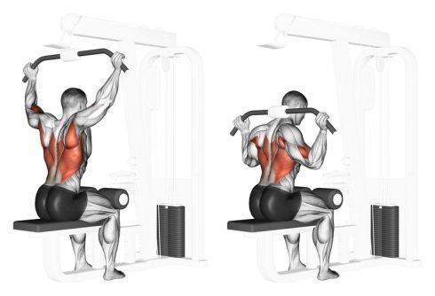 Lat Pulldown for Back Workout